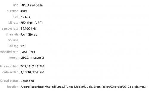 Brian Fallon Sleepwalkers February 9 2018 Page 4 Forum Chorus Fm
